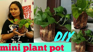 DIY ideas,do it yourself,mini plant pot diy,anvesha,s creativity