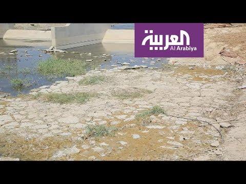 أزمة نقص المياه تتفاقم في ذي قار وتتسبب بموجة نزوح  - نشر قبل 7 ساعة