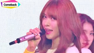 [Comeback stage] HELLOVENUS - Wiggle Wiggle, 헬로 비너스 - 위글위글, Show Music core 20150103
