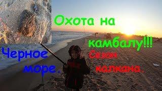 Рыбалка на камбалу Сезон калкана Грибовка Черное Море Шторм Ферина Осенняя рыбалка Глоська