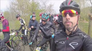 tour des flandres 2019 team Ekoi