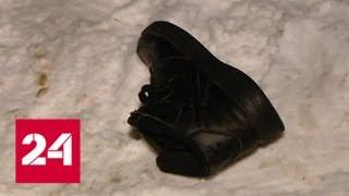 Нападение собак под Истрой: очевидец рассказал, как спасал пострадавшую женщину - Россия 24 thumbnail