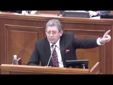 Discursul Dlui Mihai Ghimpu, Președintele PL, la investirea Guvernului - 12.02.2015