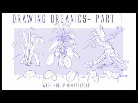 DRAWING ORGANICS- Part I