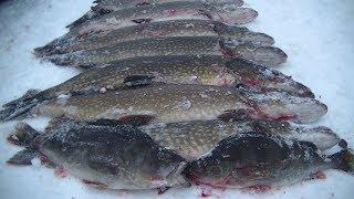 Зимняя Рыбалка с Ночёвкой и Комфортом Настоящий Кайф и Настоящая Уха