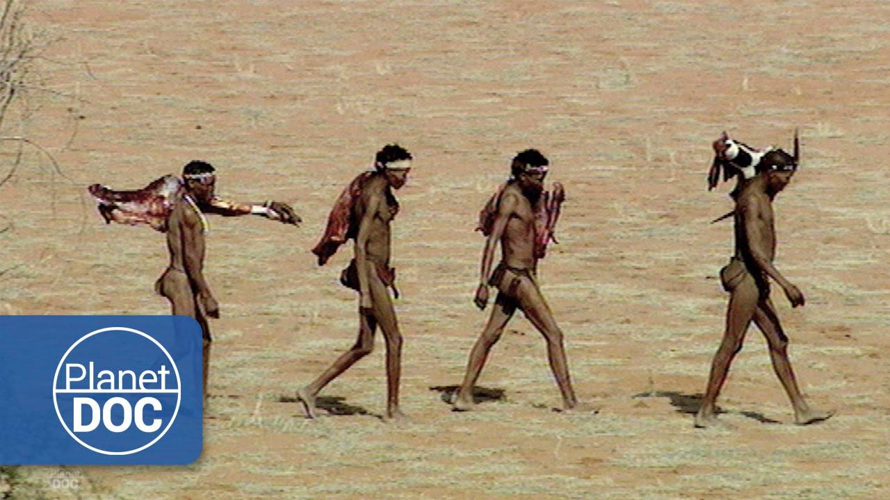 Bosquimanos Del Kalahari Tribus Africanas Youtube
