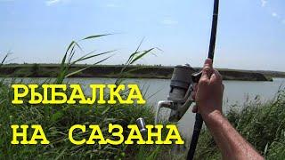 Ловля карпа. Моя рыбалка №1. Июнь 2015 г.