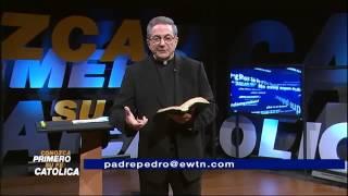 Es pecado comer animales impuros mencionados en la Biblia? - Padre Pedro Núñez