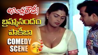 Brahmanandam & Pakeezah Superb Comedy Scene | Brahmanandam Hilarious Comedy Scene | TVNXT Comedy