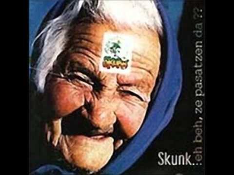 skunk-hendaia