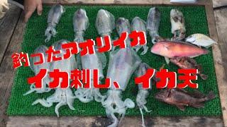 釣ってきた春の大型アオリイカをイカ刺しとイカ天にします。プロが教える上手な天ぷらのレシピ付き。エギンガー、ヤエン師必見! #三重県...