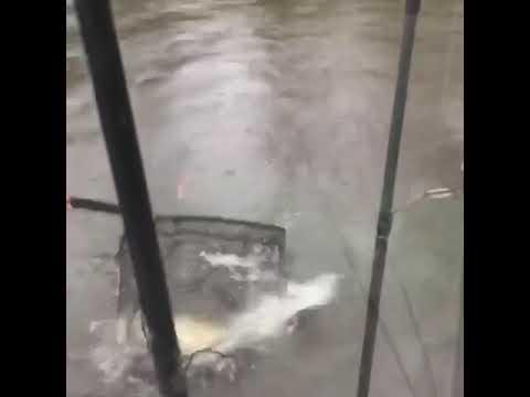 Originator fishing charters