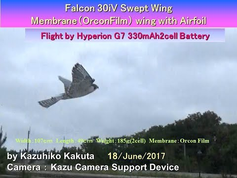 Falcon 30iV  : Flight by Hyperion G7 330mAh2cell Battery