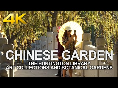 4K Walking Tour | Chinese Garden - The Huntington Library Art Collections And Botanical Gardens