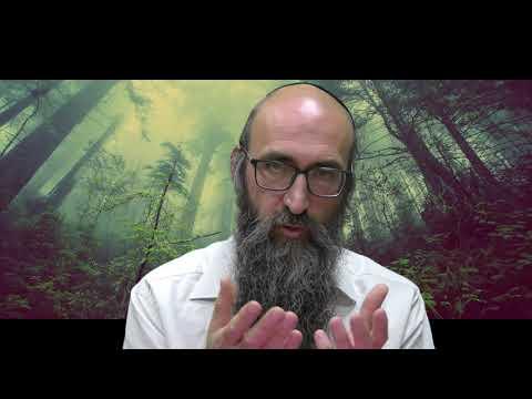 ON VA CHANGER LE MONDE 6 - Le secret des 6 Tsadikim dans la prière de minha - Rav Itshak Peretz