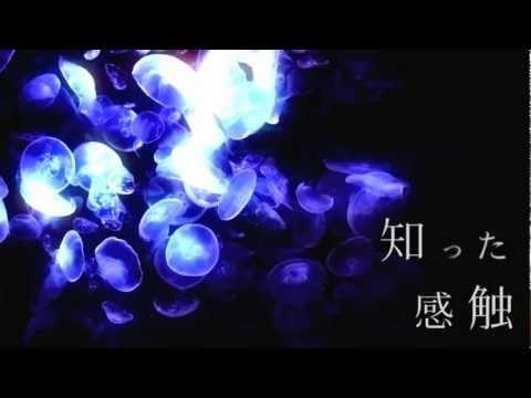 Ambiguous Journey (ft.Hatsune Miku)
