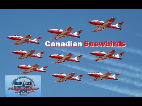 2010 Wings Over Atlanta Airshow *Canadian Snowbirds* (Part 1) -HD-