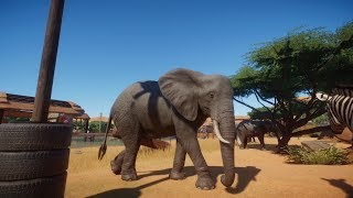 Planet Zoo (PC)(English) #40 6 Minutes of African Elephant
