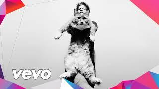 Ed Sheeran ft. David Guetta - Where Did You Go Last Night (Official Audio 2018)
