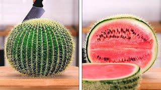 자기만의 식물을 기르는 방법 || 놀라운 결과를위한 간…