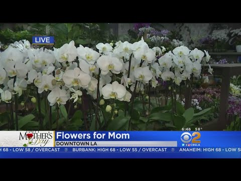 Mother's Day Rush In Full Swing At Los Angeles Flower Market