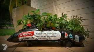 Better Homes And Gardens Tv - Diy Kitchen Garden