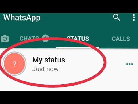 How To Fix My Whatsapp Status Not Showing Other Person Problem Solve