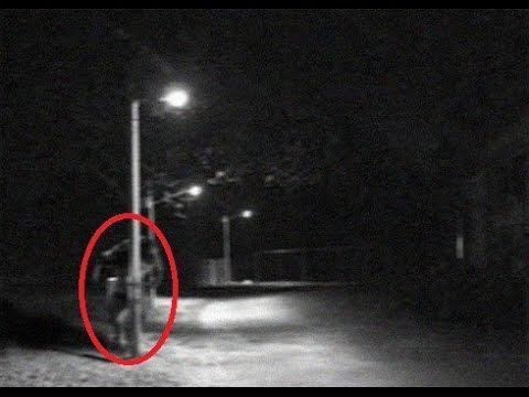 Dogman Attacks Woman's Car