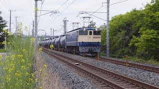 【EF65】東北線貨物列車 新白岡-久喜⑥【EF210】