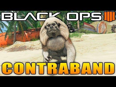 Black Ops 4: Contraband Secret Backstory (Easter Egg)