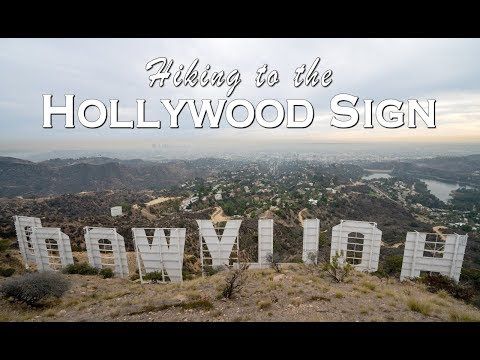 Hiking To The Hollywood Sign And The Wisdom Tree In Los Angeles