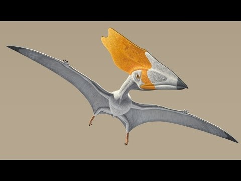 Fly Like a Pterosaur in Kinect-Powered Simulator