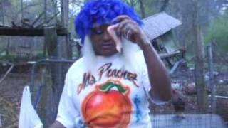 Ms. Peachez - Fry That Chicken
