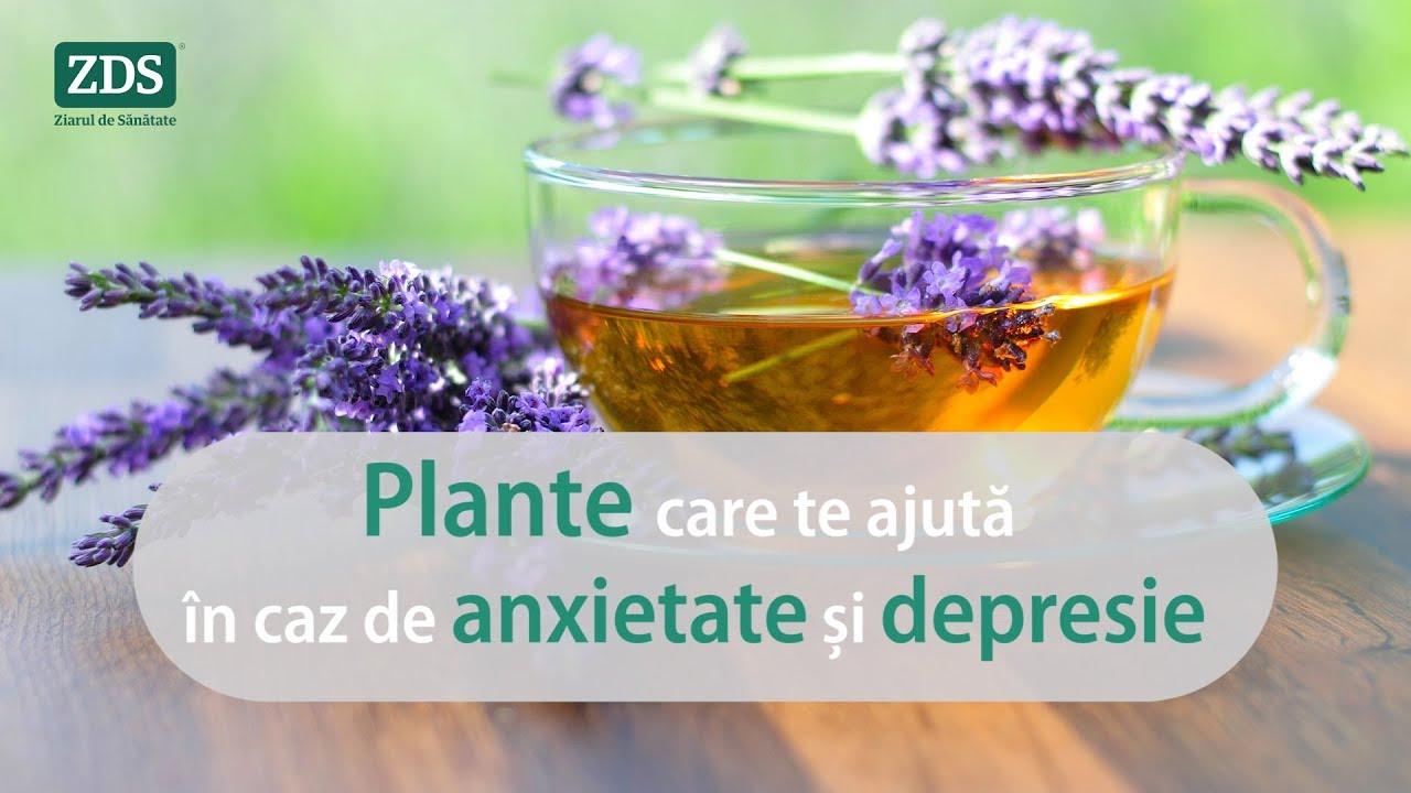 Remedii naturale pentru ANXIETATE și DEPRESIE