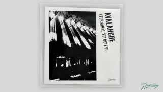 Avalanche (Terminal Velocity) (Ewan Pearson