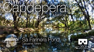 Mallorca 360 Sa Farinera Pond Canyamel Torrent Capdepera in 360º VR 4K