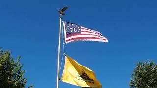 Bennington Flag and Gadsden Flag Don't Tread on Me