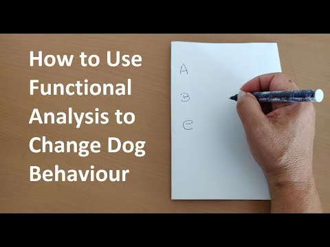How to Use Functional Analysis to Change Dog Behaviour