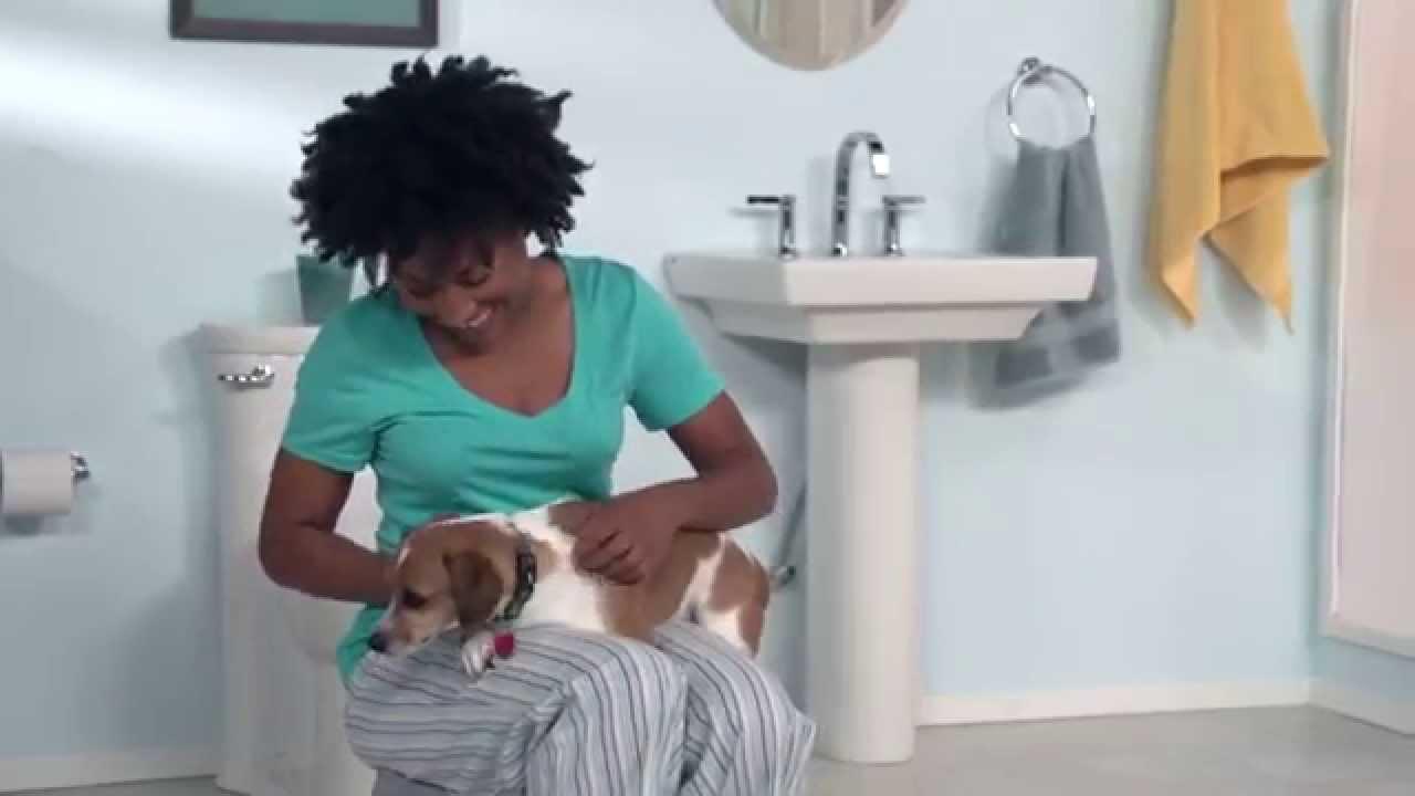 Luxury Pedestal Sinks By American Standard Youtube
