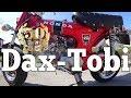 Dax-Tobi 050: ein Jubiläum - 50 Jahre Honda Dax! (Honda ST50 ST70 Dax) 1969