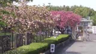 長岡京市 向日が丘支援学校