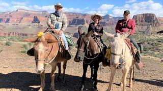 Phantom Ranch Mule Ride March 2019 Brian Jamie Wally