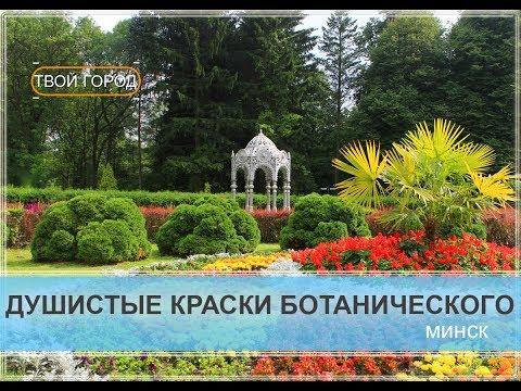 Центральный ботанический сад Национальной академии наук