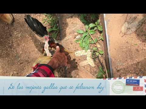 Mi Viaje A Cuba Parte 1