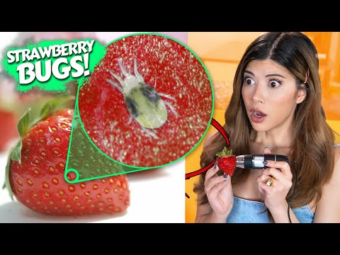 I Tested the Tik Tok Strawberry BUGS Hack with a Microscope