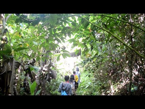 Amandaraga Falls (Lawaan, Eastern Samar)
