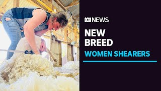 More women take to shearing as wool industry attitudes change and opportunities open up | ABC News