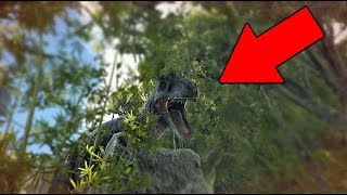 Ark - The DUMBEST ways that players die
