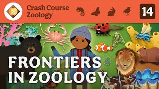 Frontiers in Zoology: Crash Course Zoology #14