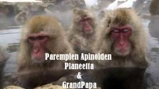 Parempien Apinoiden Planeetta & Grand Papa ( Fuzz-boxi )